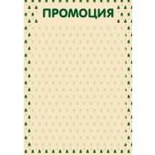 Плакат ПРОМОЦИЯ D5